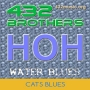432 BROTHERS BLUES LIVE CAT BLUES